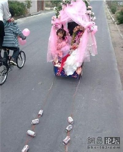 Bicycle for the Bride (5 pics)
