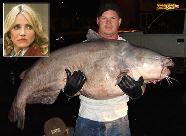 Celebrity Weight That Corresponds the Weight of Different Fish (11 pics + text)