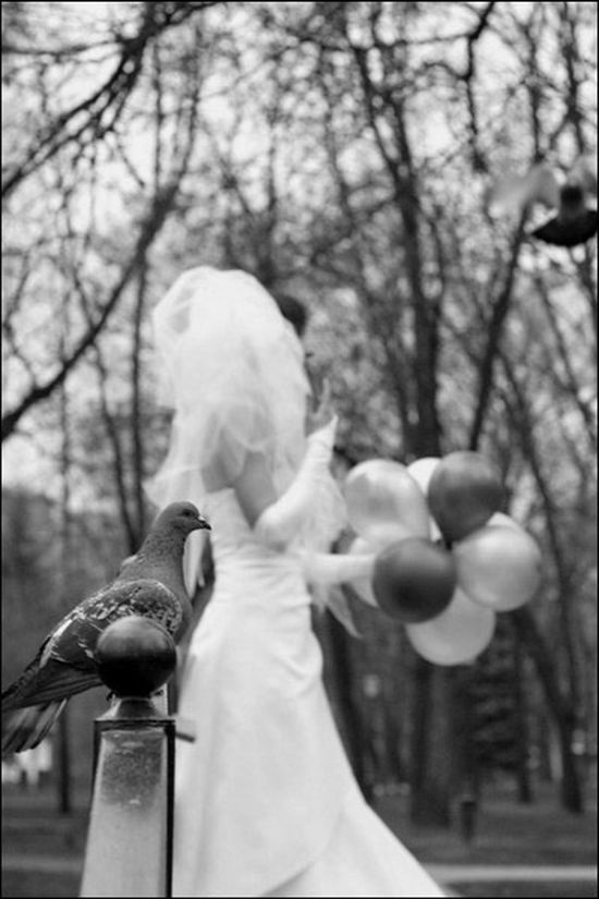 Amusing Wedding Photo Project (18 pics)