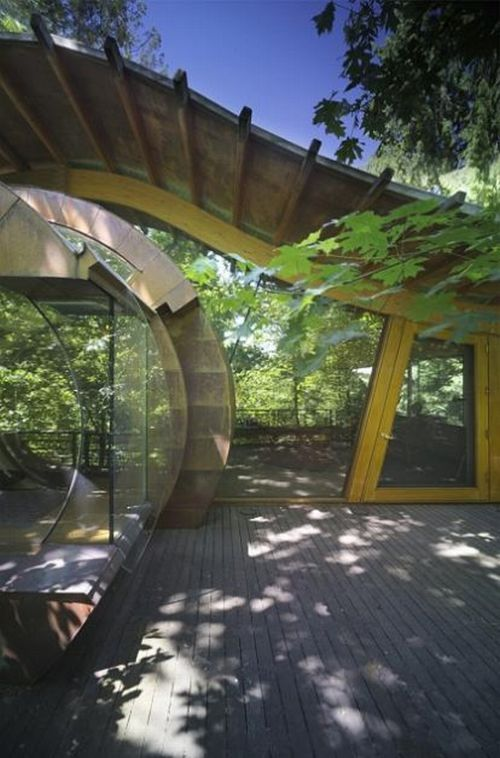 Awesome Tree House (15 pics)