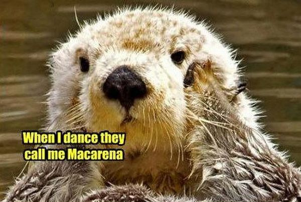 Cheerful Music Post about Macarena (4 images + 1 song)