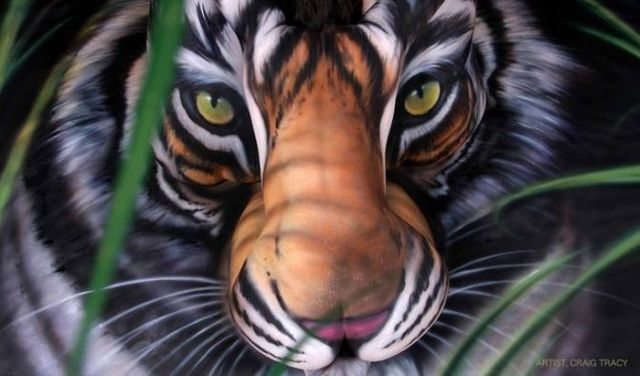 Amazing Tiger Body Art by Craig Tracy (6 pics)