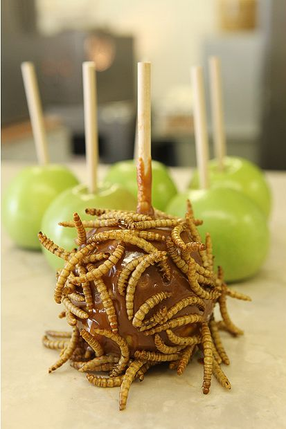 Insect Candy for a Strong Stomach (14 pics)