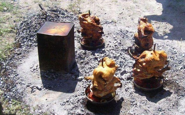 One Easy Way to Cook a Chicken (15 pics)