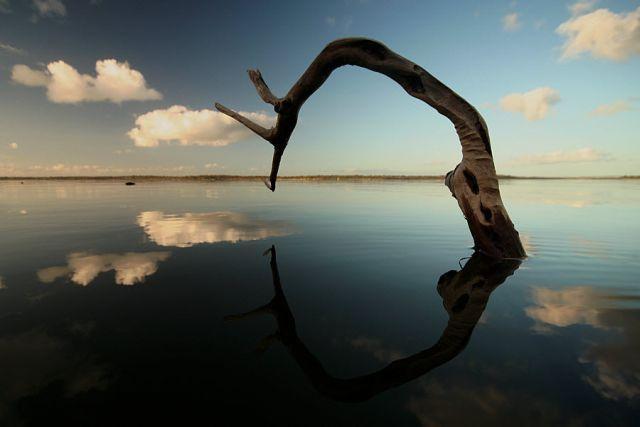 Unusually  Beautiful Photographs (54 pics)