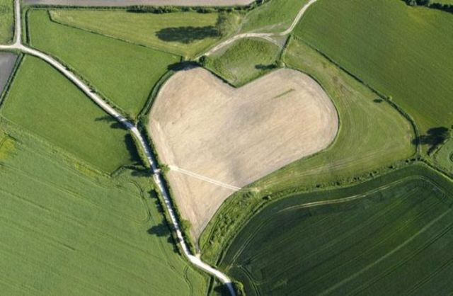 Hearts Created by Nature (11 pics)