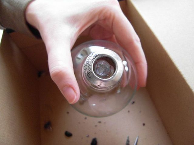 Light Bulb Terrarium (19 pics)