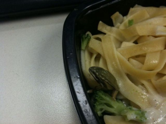 Surprise in the Lunch Box (5 pics)