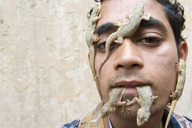 The Indian 'Lizard Boy (5 pics)