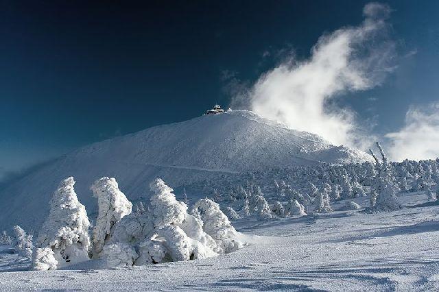 Real Snow Realm (21 pics)