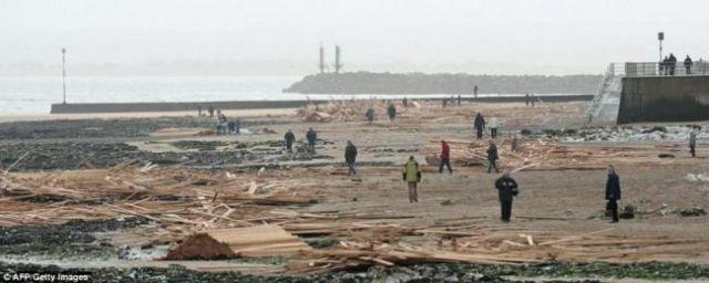 The Sea Present: Boards Washed Ashore (7 pics)