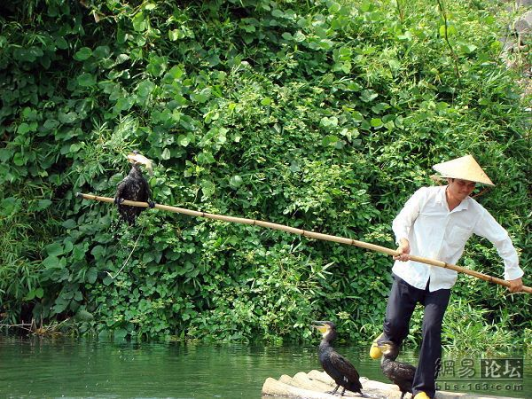 New Way of Fishing (10 pics)