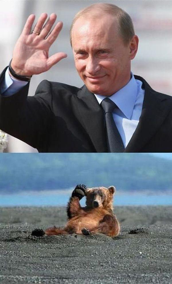Hello Putin! (20 pics)