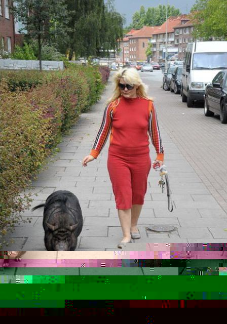 Strange Pet Walking (13 pics)