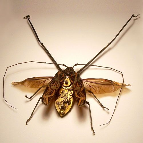 Awesome Steampunk Bugs by Mike Libby (26 pics)