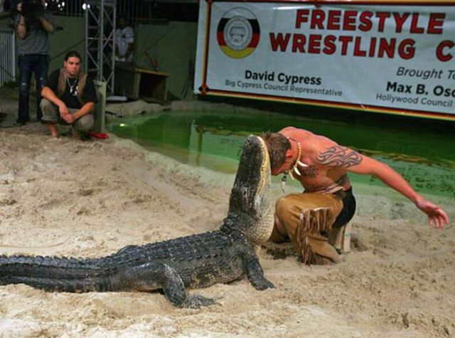Don't Play With Crocodiles! (15 pics)