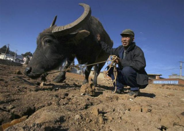 Record Drought in China (25 pics)