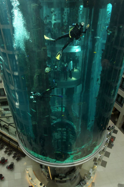 Unbelievable: Elevator Inside Aquarium (11 pics)