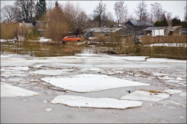 Spring Flood (37 pics)