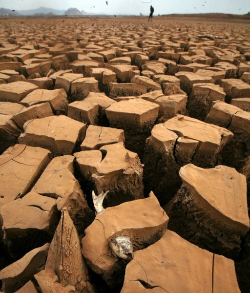 Record Drought in China. Part 2 (40 pics)