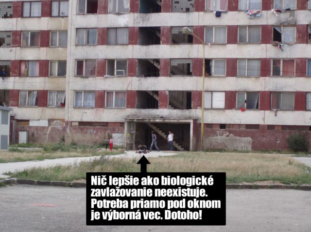 Really Poor Neighborhoods (11 pics)