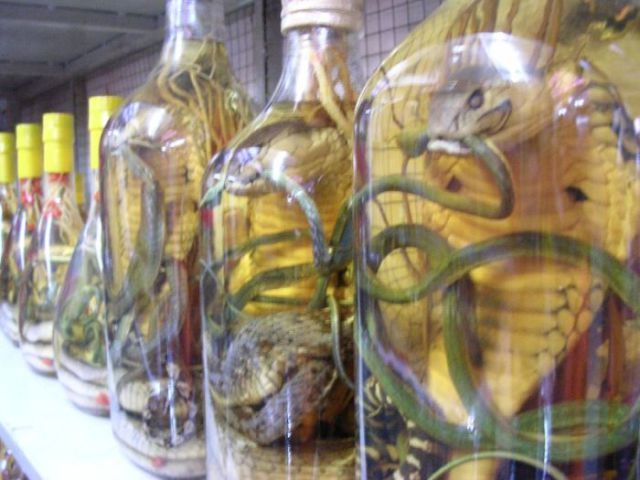 Snake Wine (24 pics)