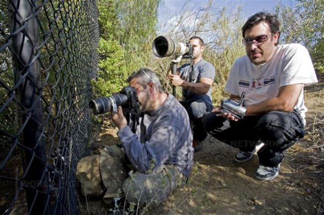 Difficult Life of Paparazzi (57 pics)