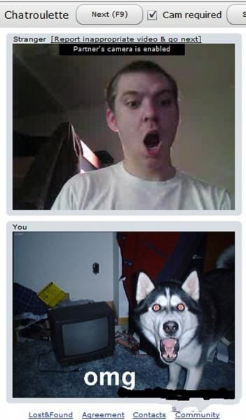 Kindred Spirits on Chatroulette (19 pics)
