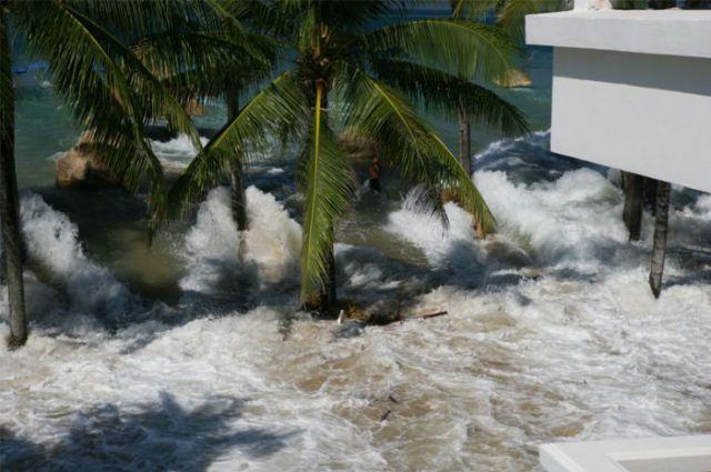 Tsunami Seen through the Window (7 pics)