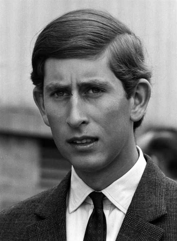 The Curious Case of Prince Charles (30 pics)