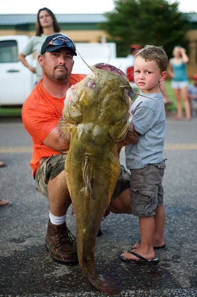 Unusual Tournament: Fishing for Catfish with Bare Hands (30 pics)