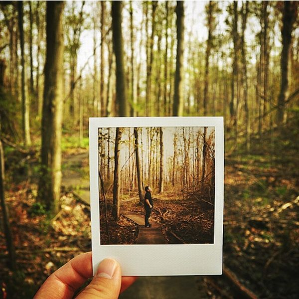 Playing with Polaroids (19 pics)