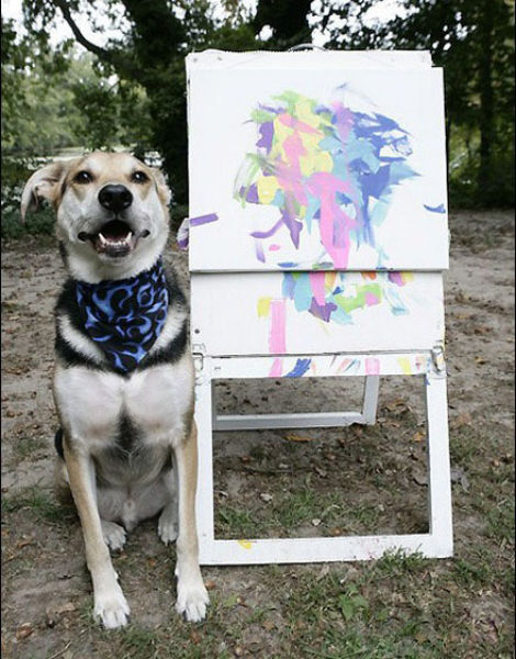 Animals Who Like to Paint (12 pics)