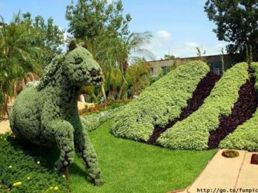 "Incredible ""Fairy Tale"" Garden (35 pics)"