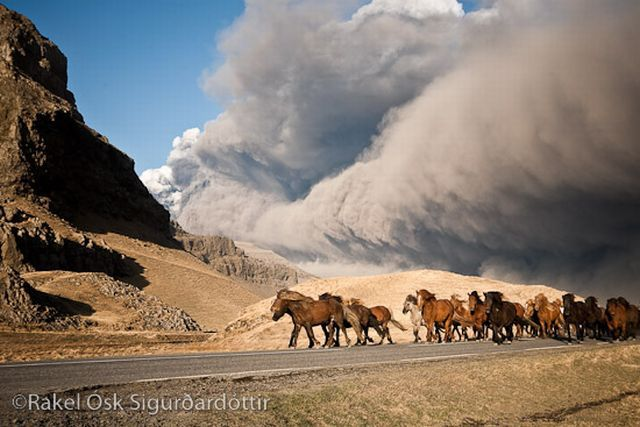 The Wrath and Beauty of Mother Nature (81 pics)