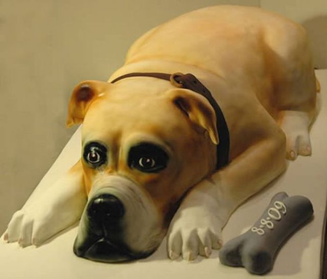 Cool Cakes in the Form of Dogs (12 pics)