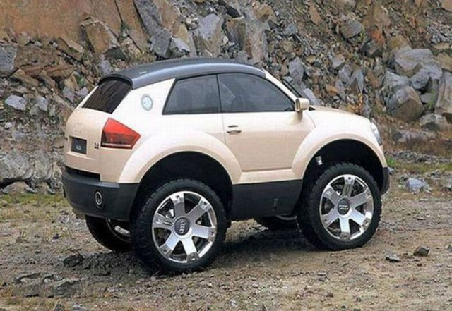 Just Smart Cars (18 pics)