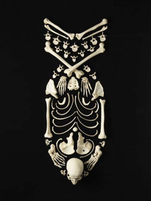 Art Made from a Human Skeleton (12 pics)