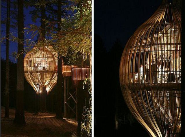 Amazing Crysalis Treehouse Restaurant (7 pics)