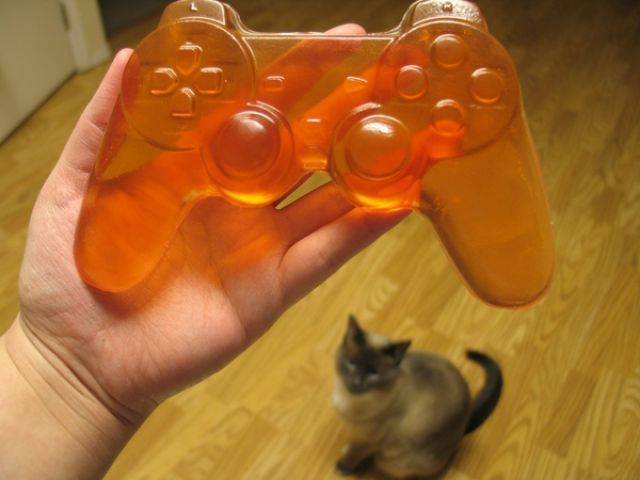 A Present for a Gamer (9 pics)
