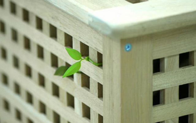 A Cute but Strange Idea(16 pics)