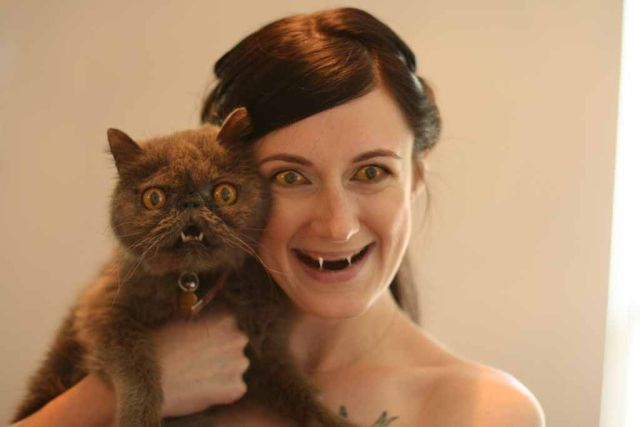 A Wedding Cat (17 pics)