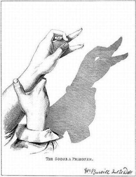 Incredible Shadow Art (18 pics)