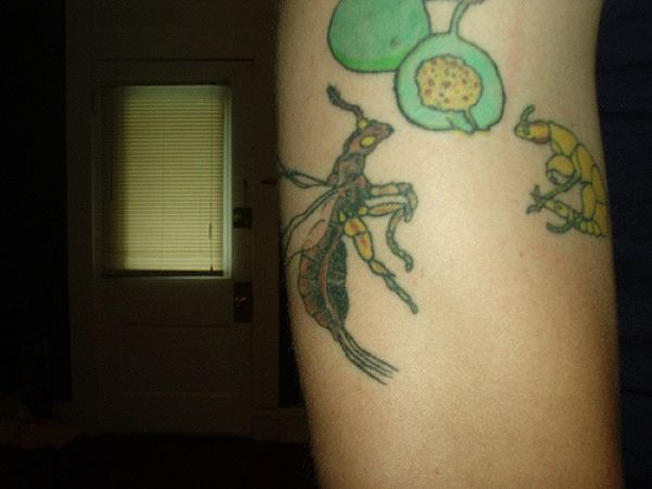 Scientific Tattoos. Part 2 (53 pics)