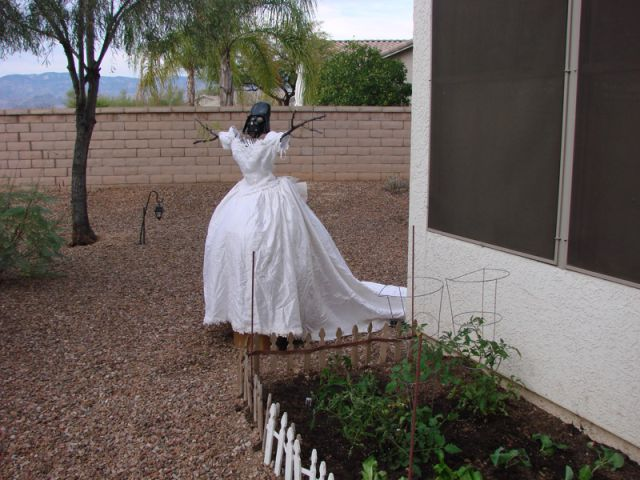 Wedding Dress Revenge (34 pics)