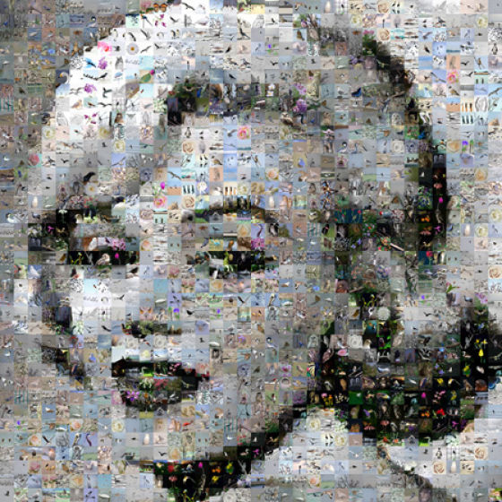 Very Original Photo Mosaics (20 pics)