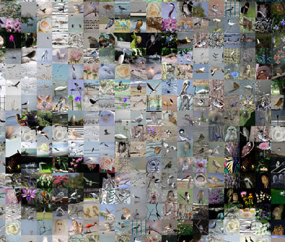Very Original Photo Mosaics (20 pics)