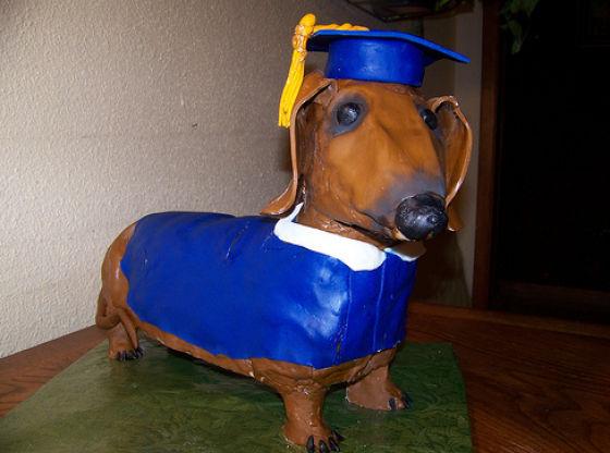 Strange Graduation Cakes (54 pics)