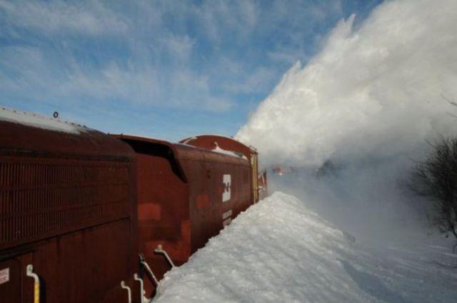 A Very Unusual Train (27 pics)