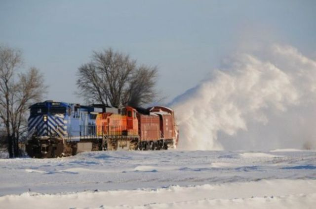 A Very Unusual Train (27 pics)